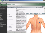 Screen shot of EMR Software showing image of upper-back of a male body with descriptions