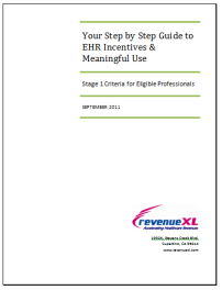 Free EHR Incentives Guide resized 202
