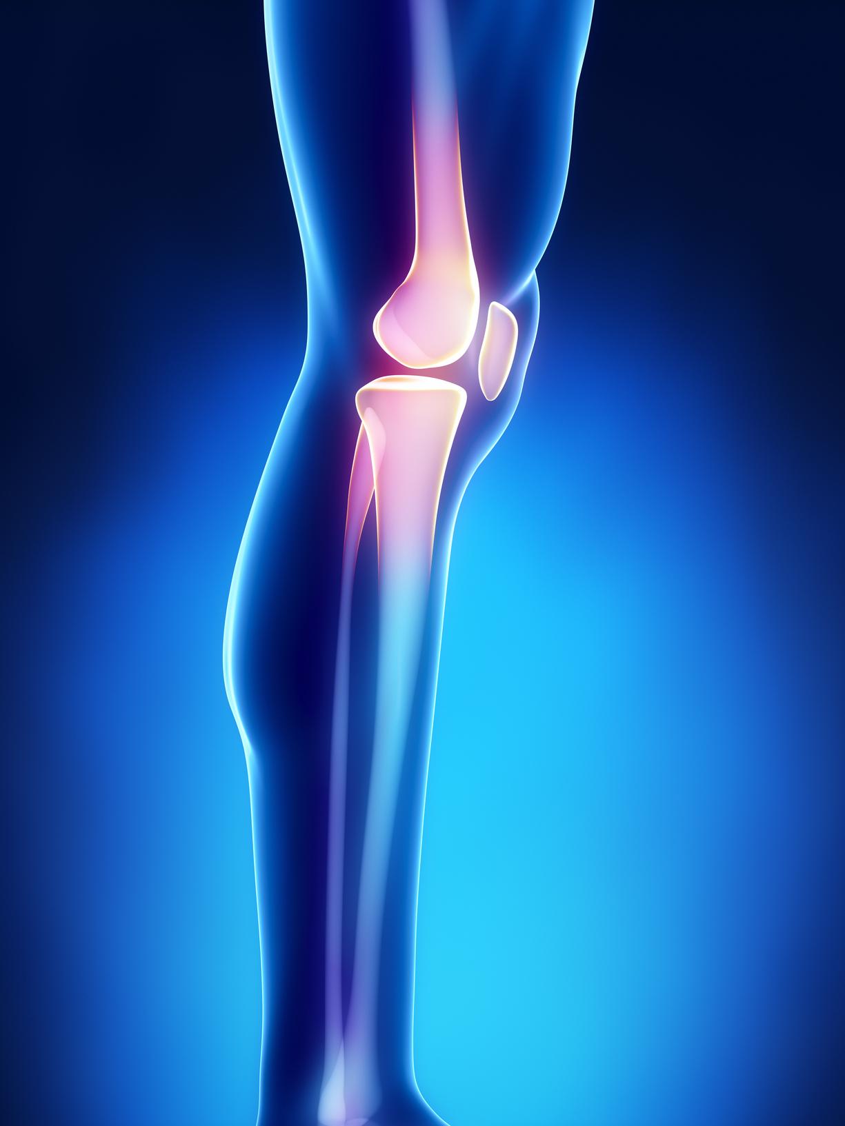 Orthopedics EHR Software