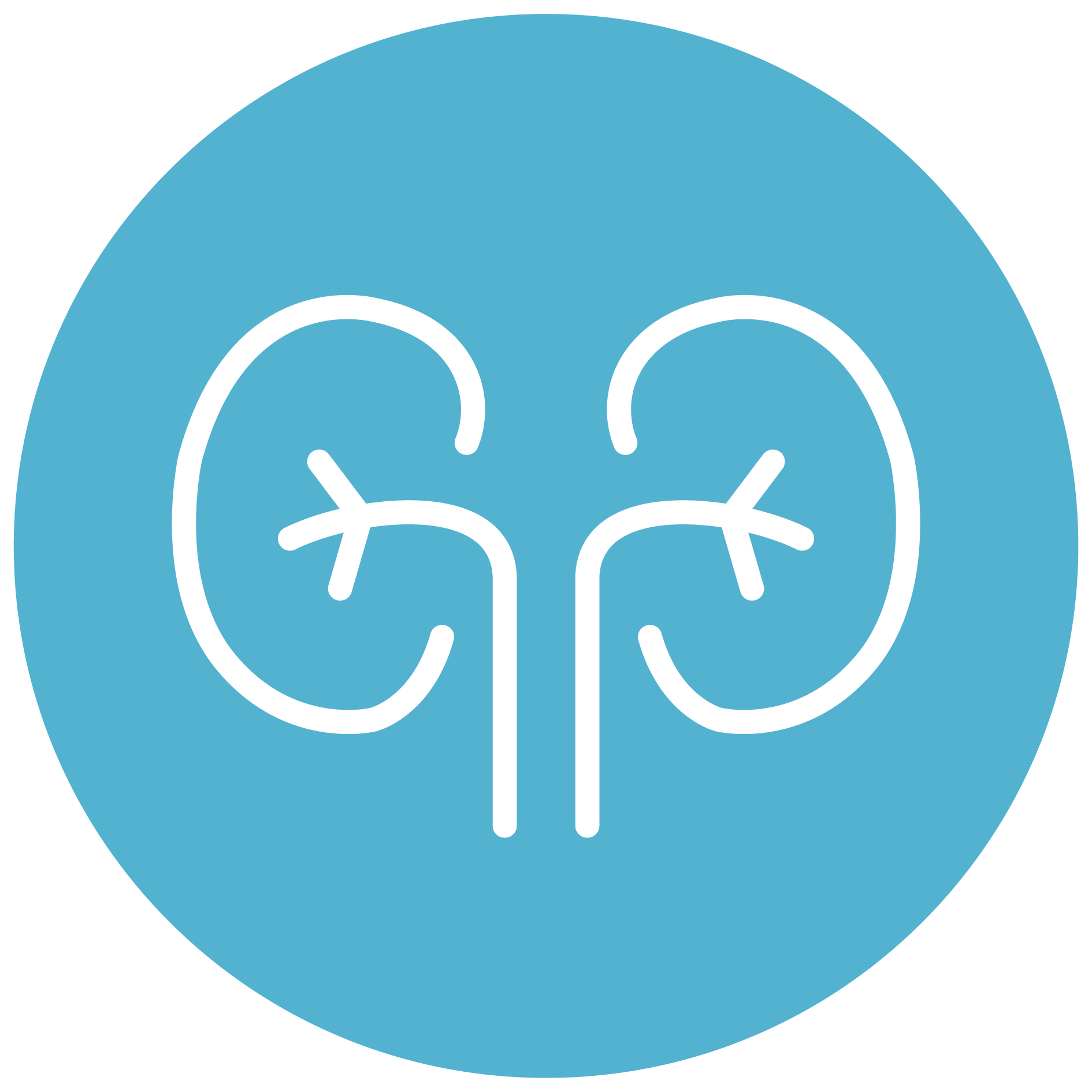 Nephrology EHR